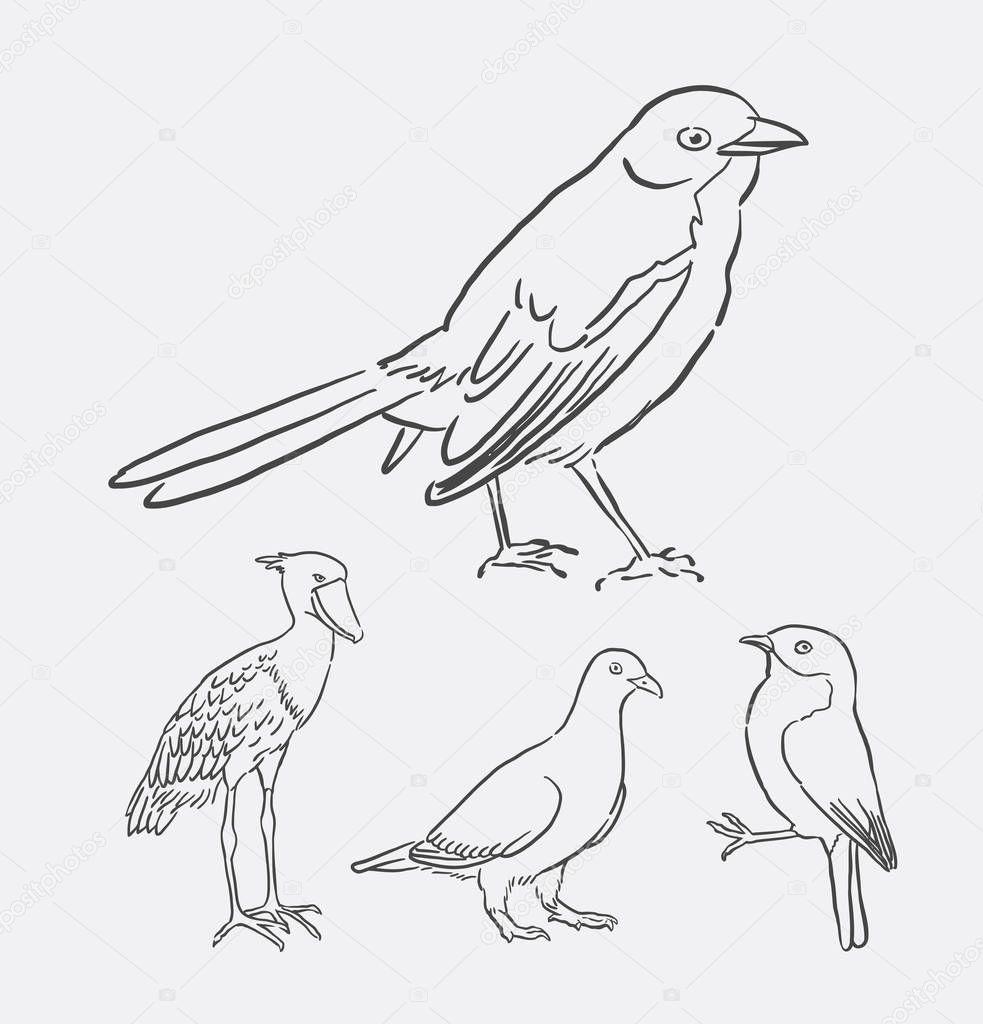 dierlijke lijnwerk vogel tekenen stockvector