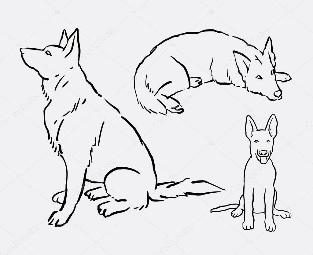 Owczarek Niemiecki Pies Zwierzę Linii Sztuki Rysunku Grafika