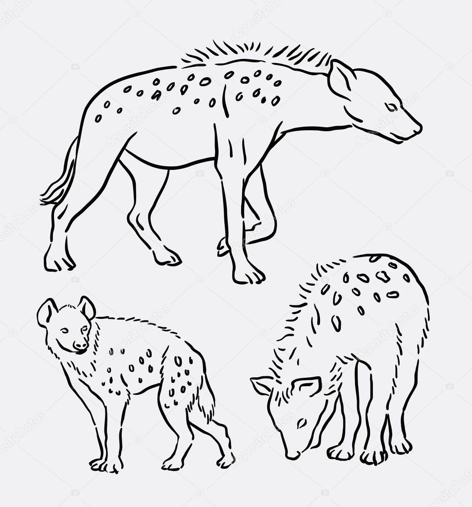 Line Drawings Of Wild Animals : Hyena wild animal line art drawing — stock vector