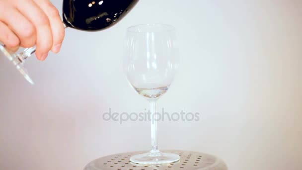 The frame of stylish glasses for the wine tasting in the elegant dining room of the winery with wine on the table.
