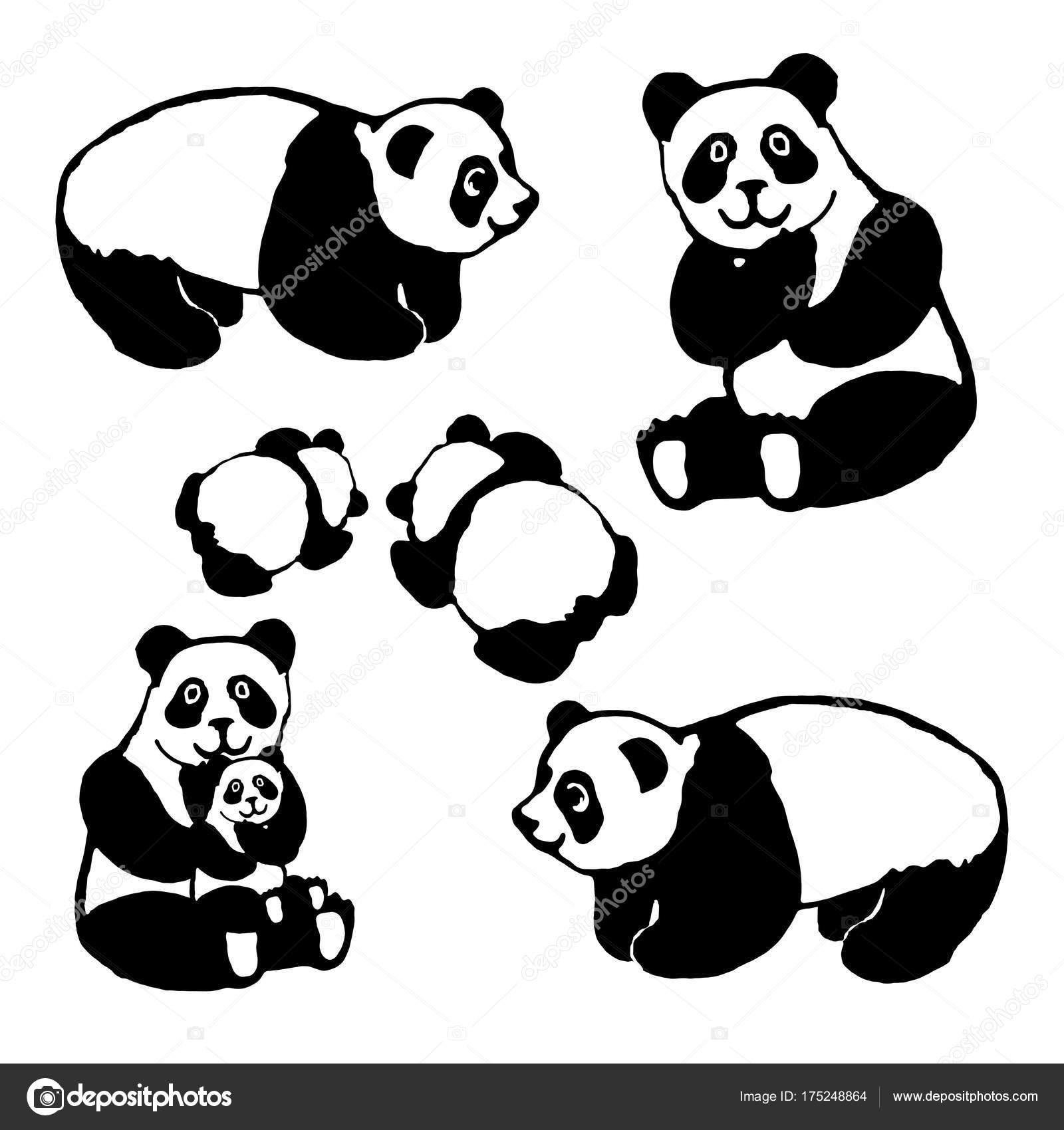 Vector de la imagen de un oso panda — Archivo Imágenes Vectoriales ...