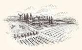 Skica, farma, zemědělství nebo vinice. Vektorové ilustrace