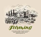 Skica, u farmy. Venkovská krajina, zemědělství, farmářství, vinice vektorové ilustrace