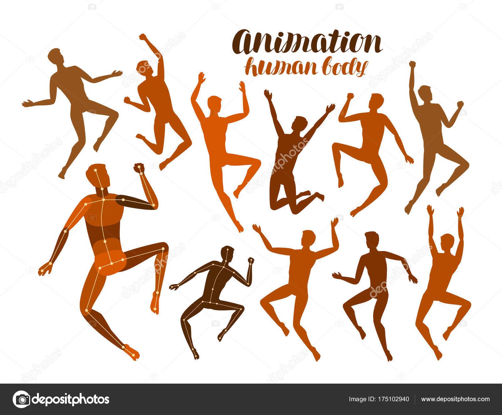 Animation des menschlichen Körpers. Anatomie, Menschen in Bewegung ...