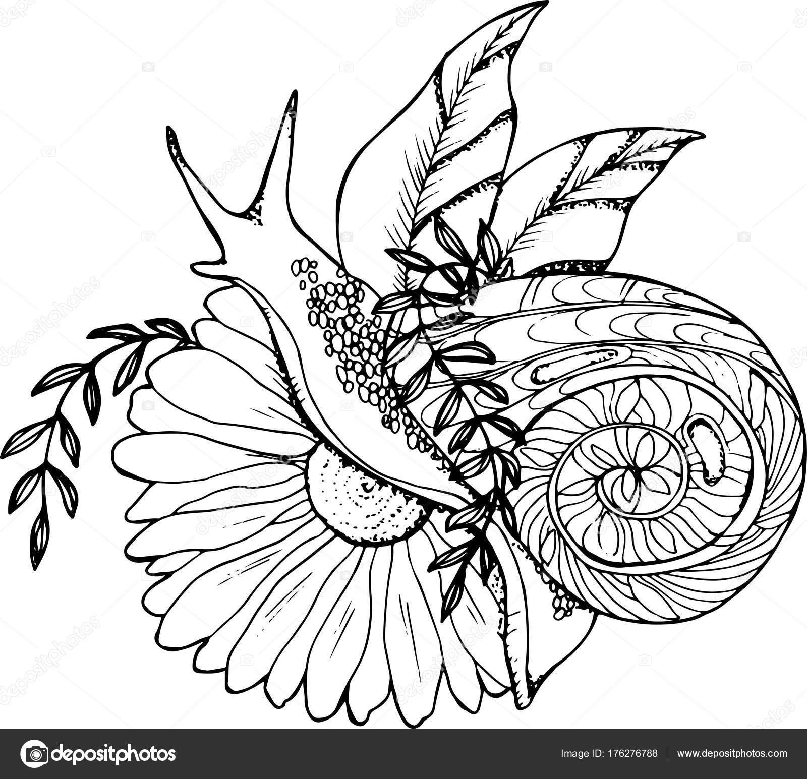 Une Illustration Dun Escargot De Ramper Dans Une Fleur