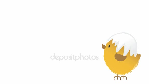 Animation of a jumping cute fluffy easter chicken with cracked egg shell on its had, animated hand drawn cartoon character.