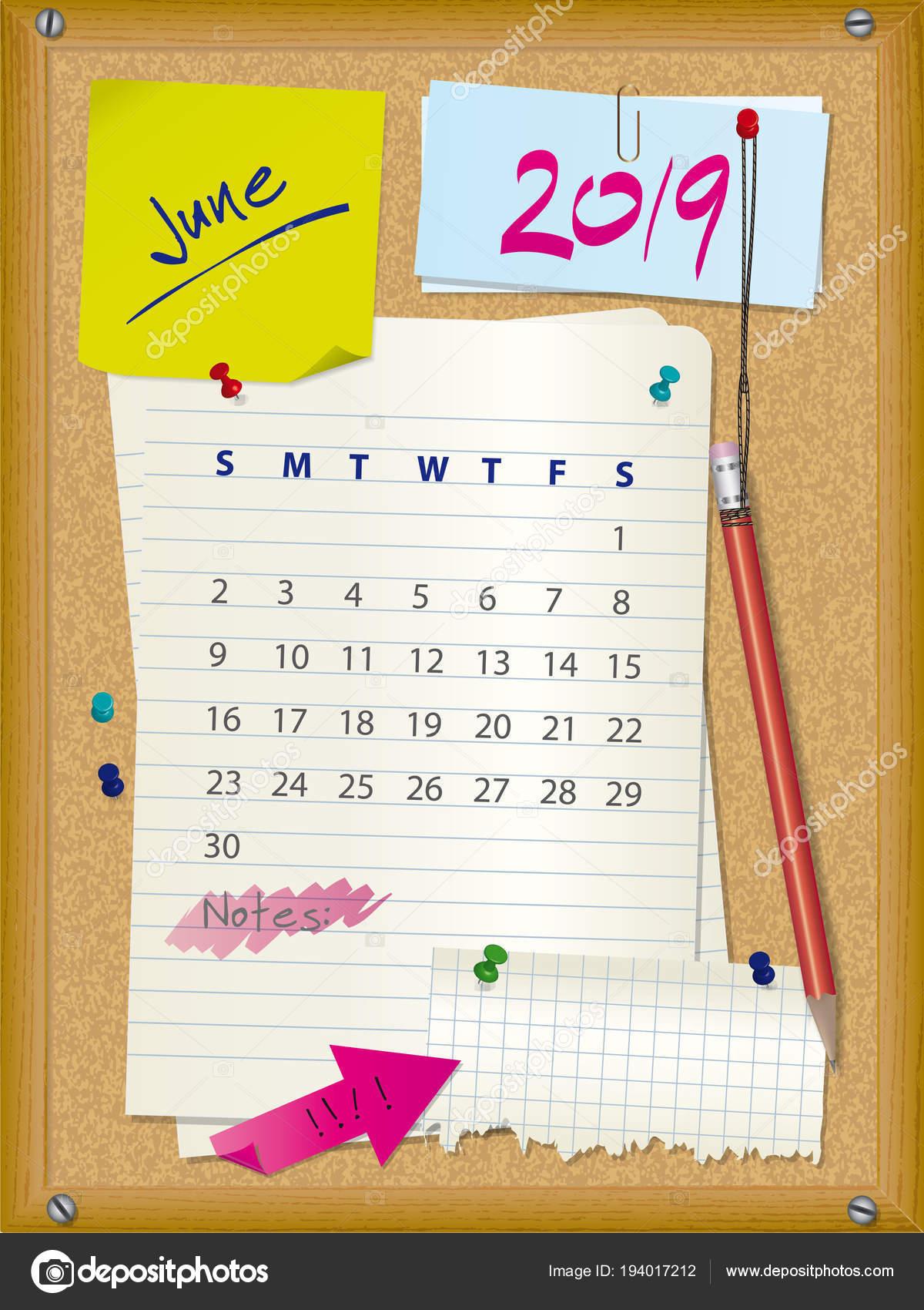 2019 naptár június 2019 naptár   június hónapban   parafa fórumon jegyzetek — Stock  2019 naptár június