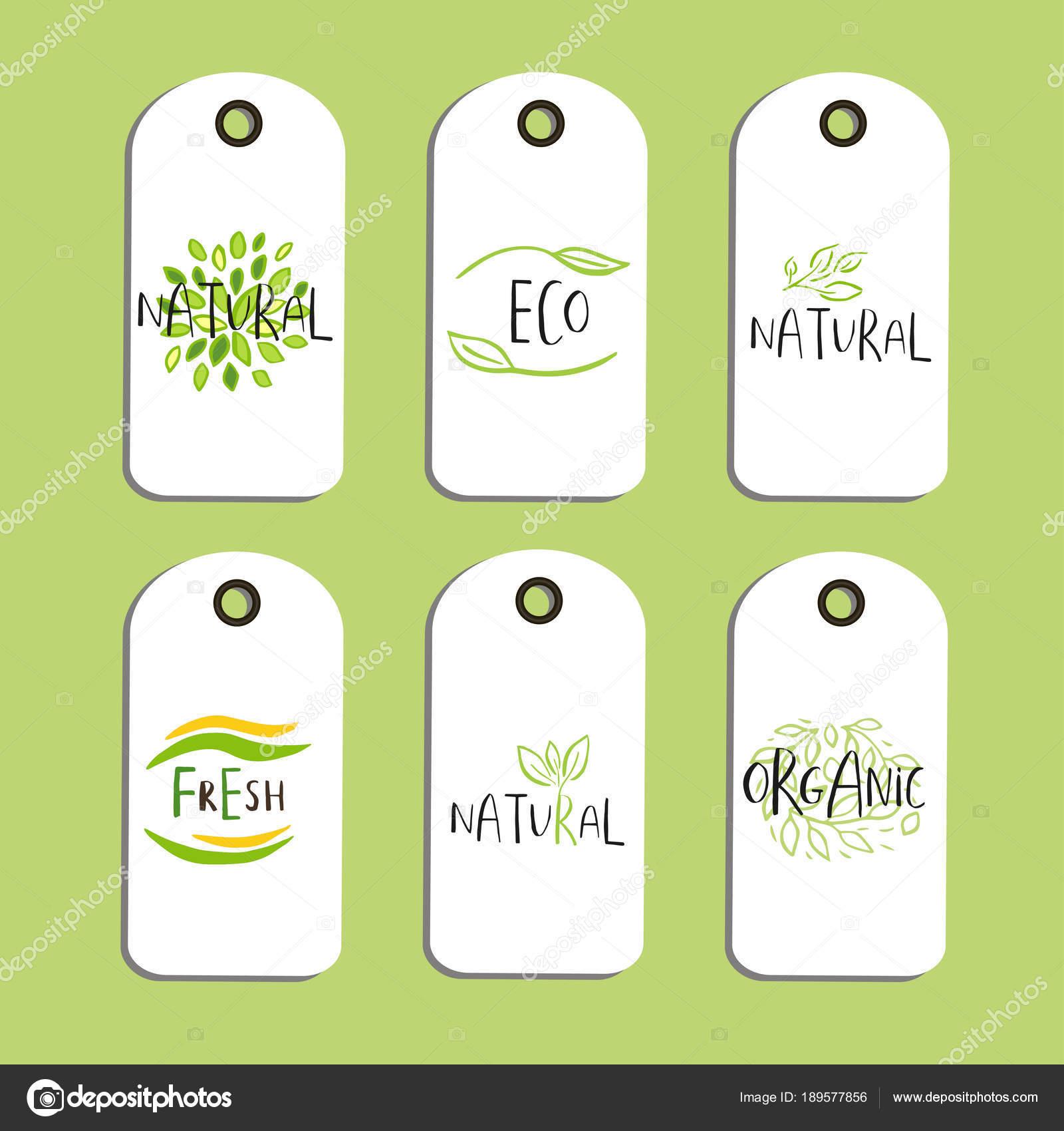 set vector eco badge tag bio green logo vegan sign stock vector