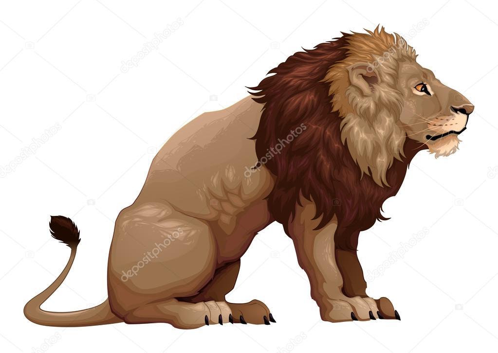 Profil D Un Lion Assis Image Vectorielle Ddraw 125503852