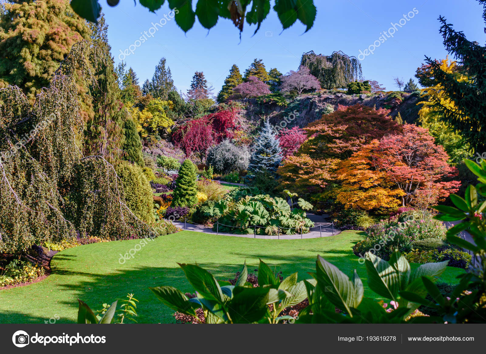 Arboretum with colorful trees and bushes, green lawn — Stock Photo ...