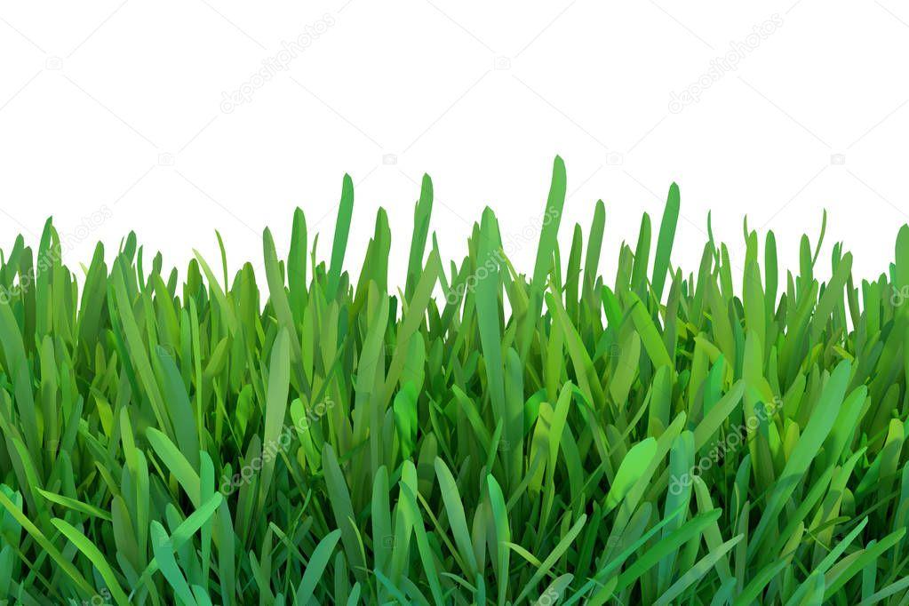 Cesped de primavera verano hierba verde fondo de - Cesped natural ...