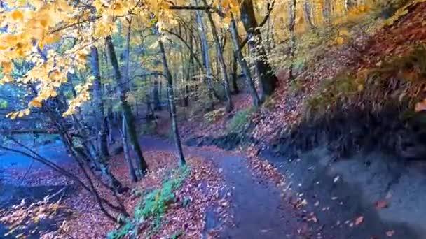 Pěší cesta v přírodním parku