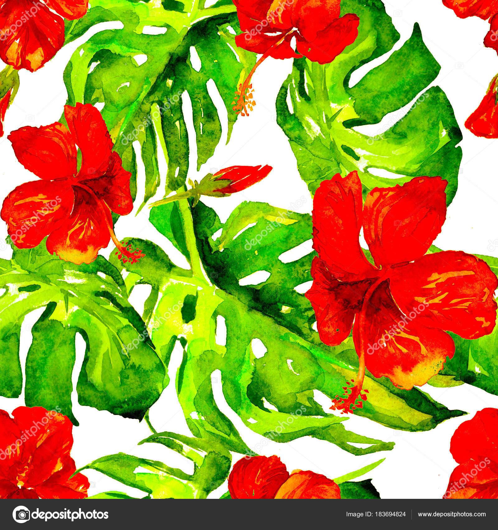 Moldes De Flores Hawaianas Para Imprimir Acuarela De Patrones Sin
