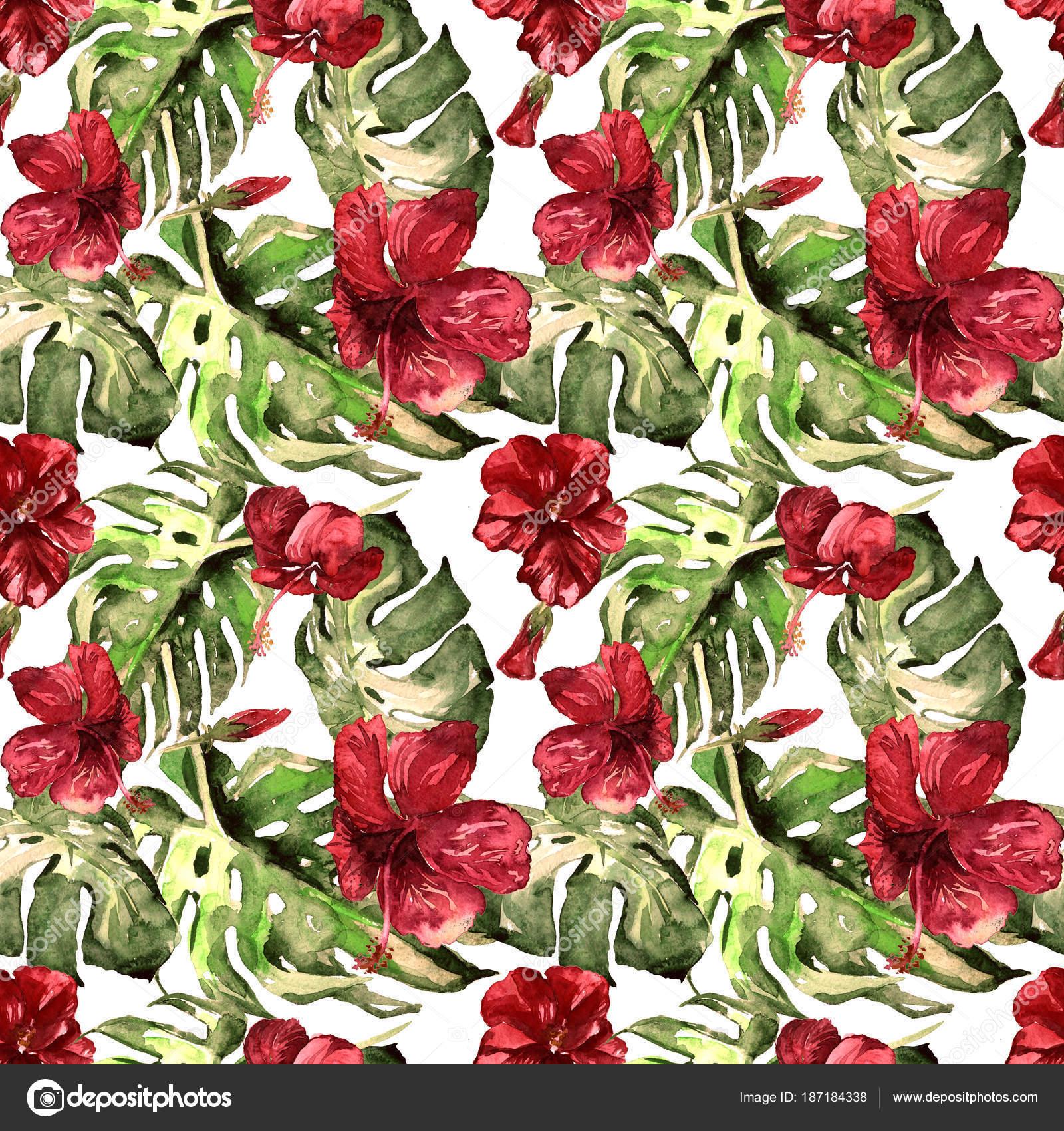 Imagenes Flores Hawaianas Para Imprimir Flores Exoticas Acuarela