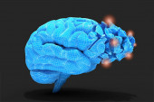 Brain inflammation or other process associated with tissues damage or thinking Conceptual 3d illustration helpful for in visualizing brain diseases.