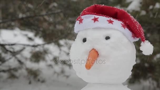 Veselý sněhulák stojící na sněhu 3
