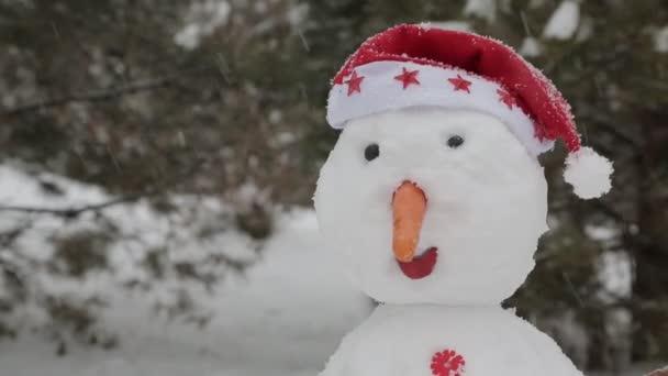 der fröhliche Schneemann im Schnee 5