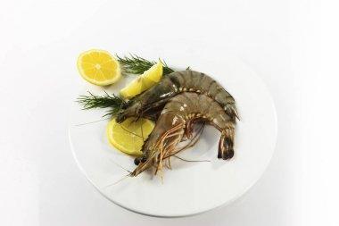 Raw Black Tiger Prawns Penaeus monodon, shrimp with lemon and dill on a plate, shrimp ready for preparation