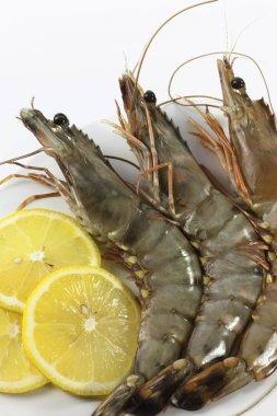 Raw Black Tiger Prawns Penaeus monodon, shrimp with lemon on a plate ready for preparation