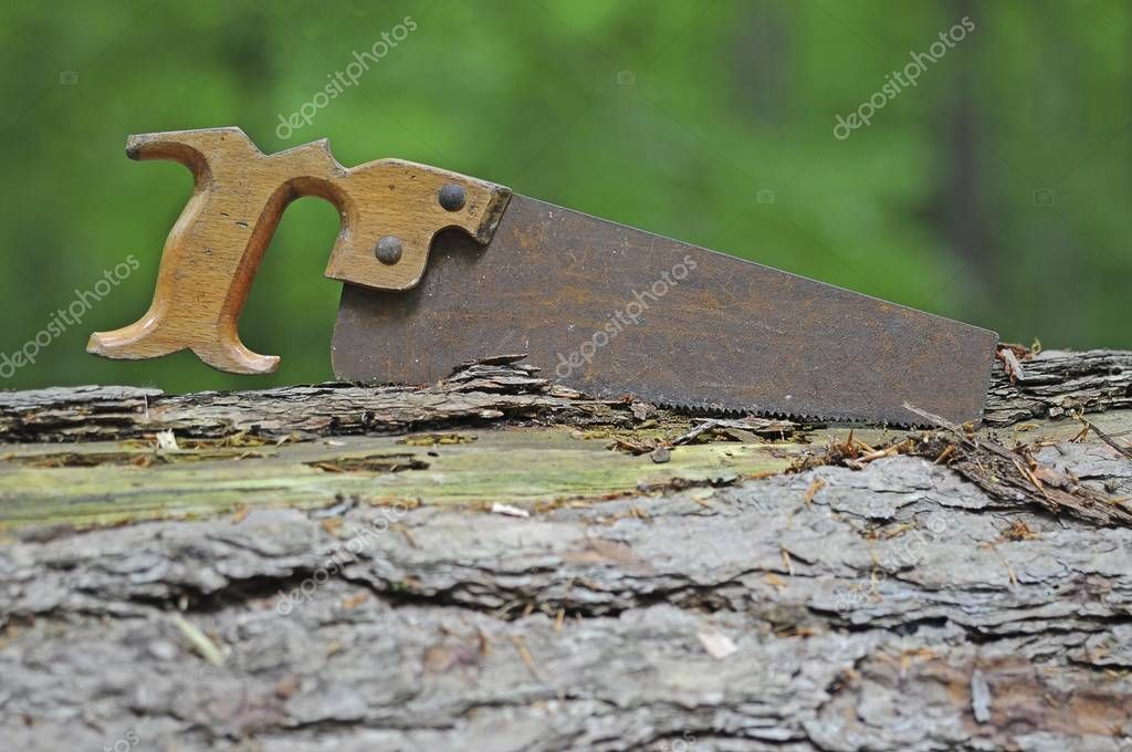 Rusty old saw in the forest