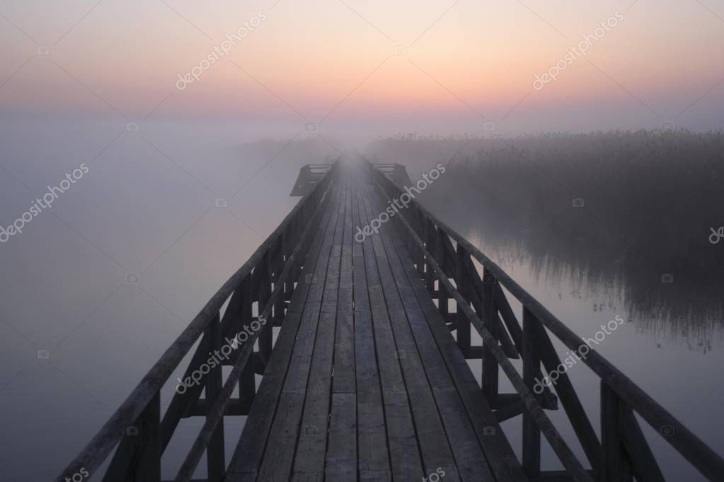 View from the jetty over the Federsee lake before sunrise, nature reserve near Bad Buchau, Biberach administrative district, Upper Swabia, Baden-Wurttemberg, Germany, Europe