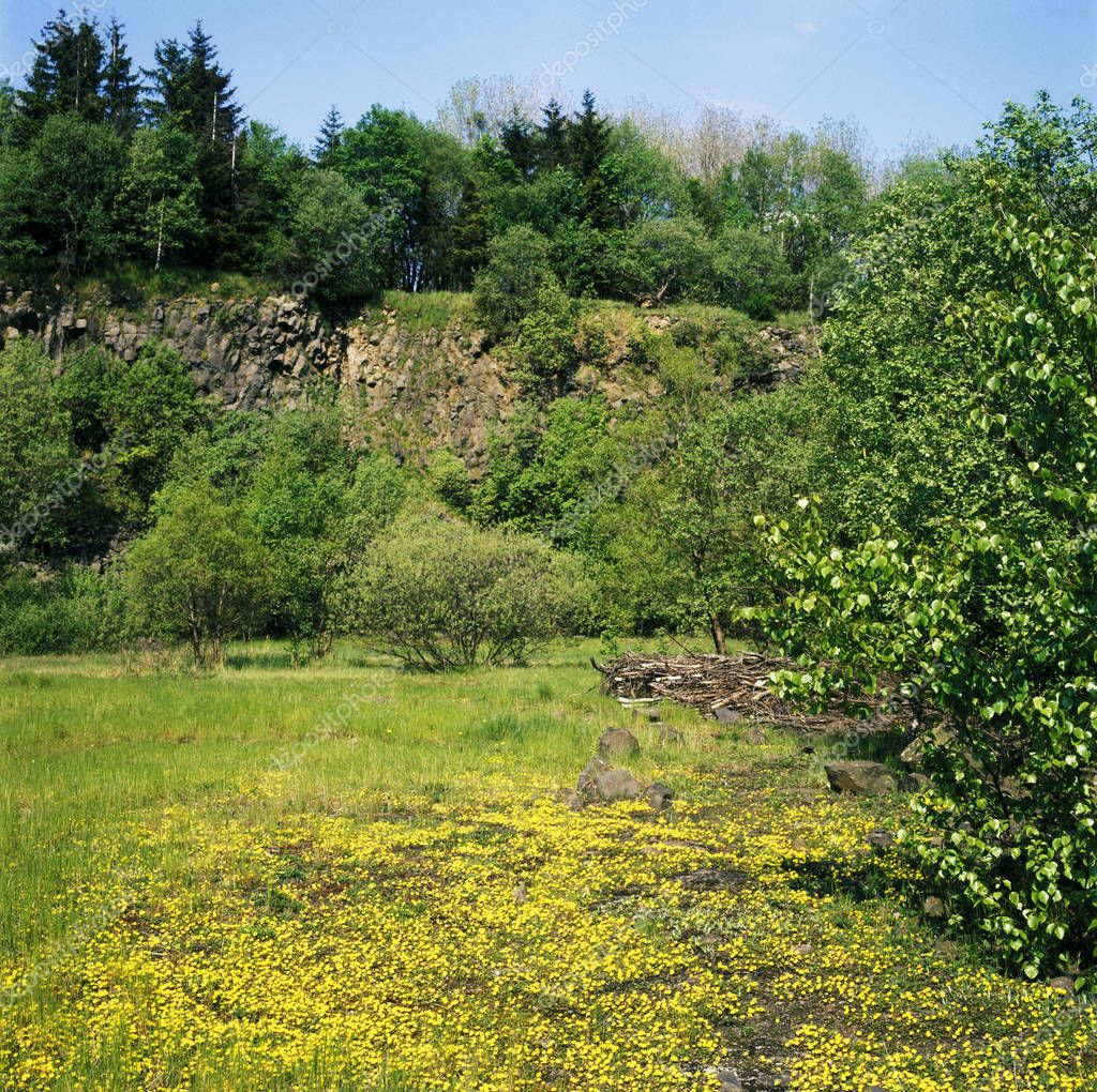 Nature reserve Lange Rhoen Rhoen near Oberelsbach Lower Frankonia Bavaria Germany basaltcolumns at the Steinernes Haus Stone House at the route to Ginolfs