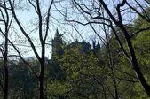 Fotografie Ansicht im Frühjahr vom Wanderweg zum Schloss Hochschloss Pehl Phler Schloss 1883 bis 1885 Phl Paehl bin Ammersee Landkreis Weilheim im oberen Bayern Deutschland