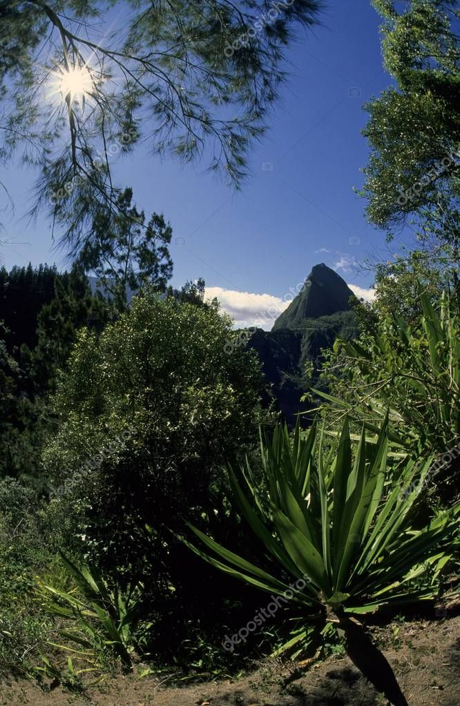 Piton Cabris mountain, 1435m, backlighting, Cirque de Mafate, le de La Runion, France, Europe
