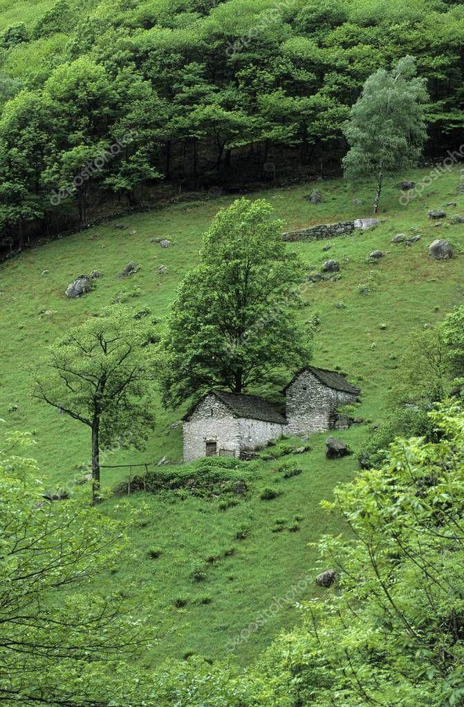 Two huts on an alpine meadow near Vogorno