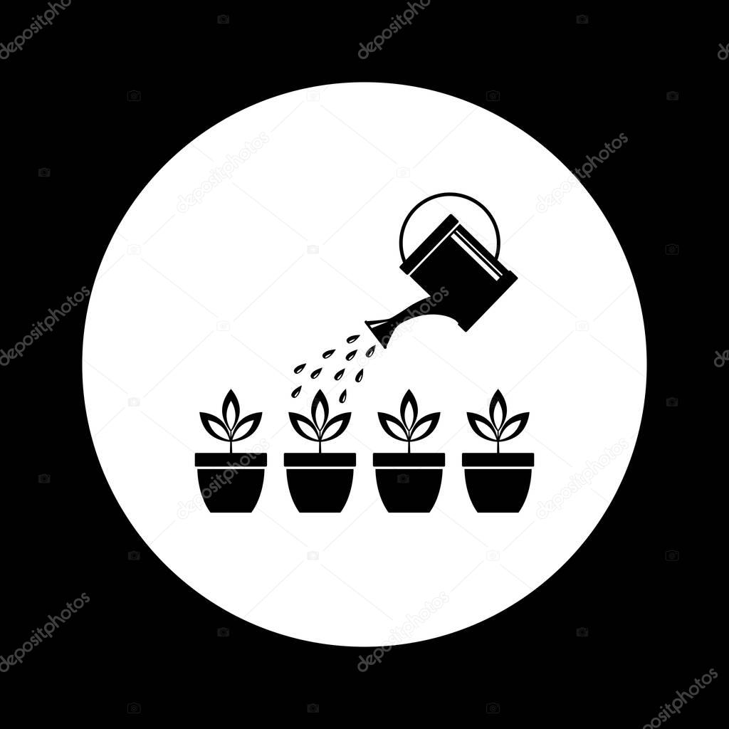 Watering can with plants