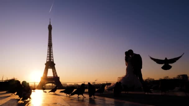 Silhouette of kissing newlyweds on a eiffel tower background. Sunrise and pigeons around. Paris