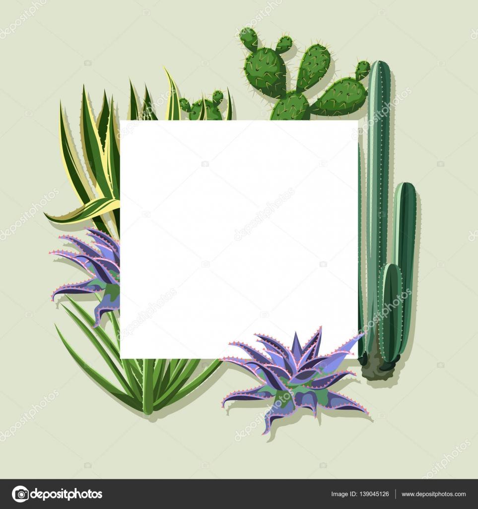 Marco con cactus y suculentas. Plantas del desierto — Vector de ...