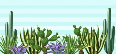 Background with cactuses and succulents set. Plants of desert