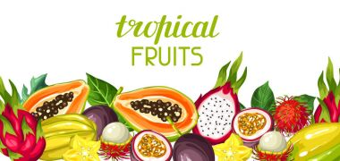 Banner with exotic tropical fruits. Illustration of asian plants