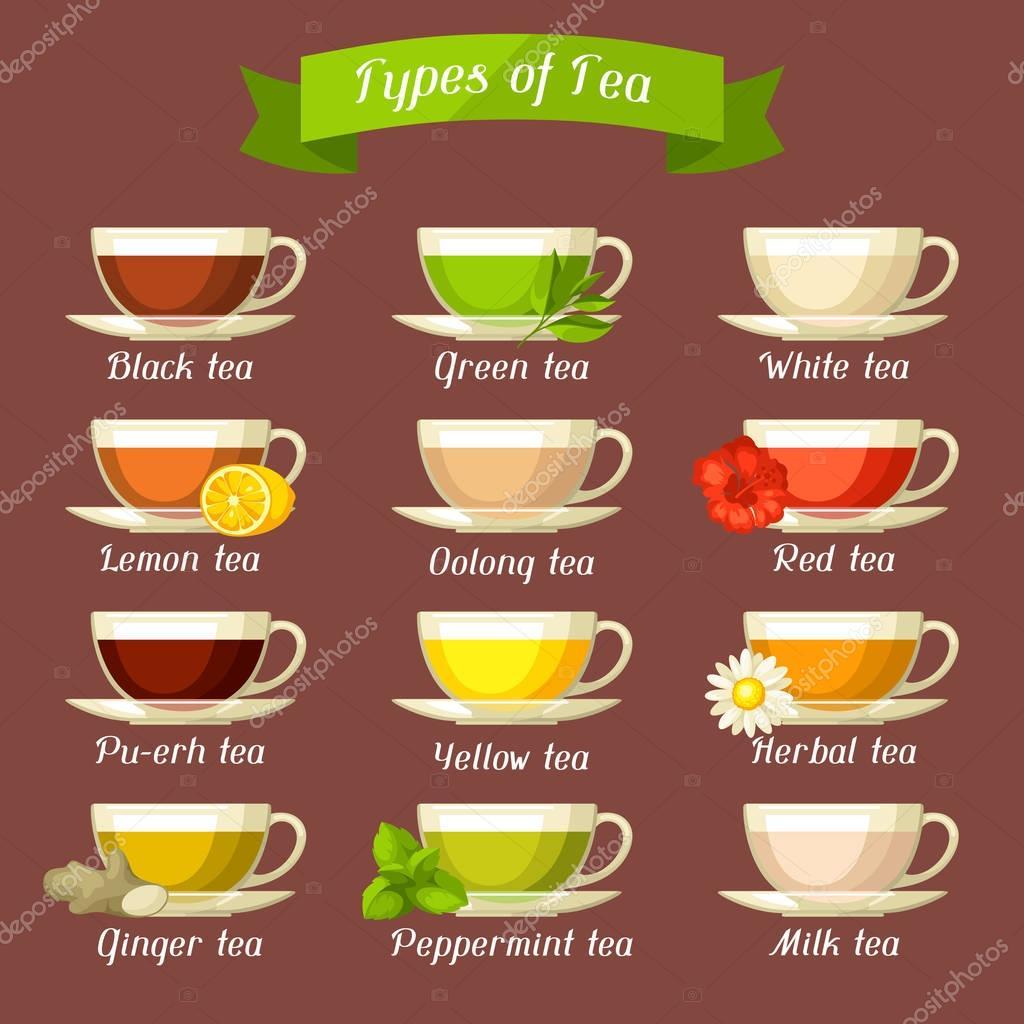 Tipi di t set di tazze di vetro con diversi gusti e ingredienti vettoriali stock incomible - Diversi tipi di figa ...