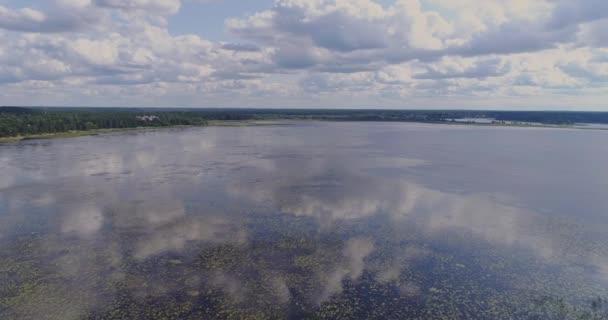 Lekníny jezero mořské řasy dron letu a borový les