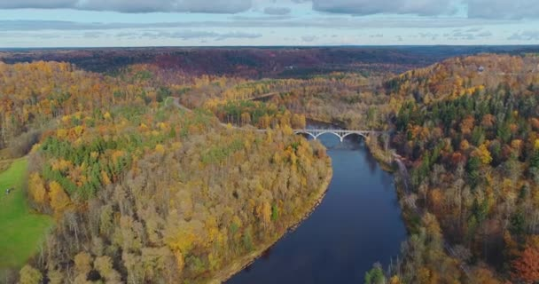Autumn Forest Sigulda city nature, Gauya river drone flight, bridge car drive from above