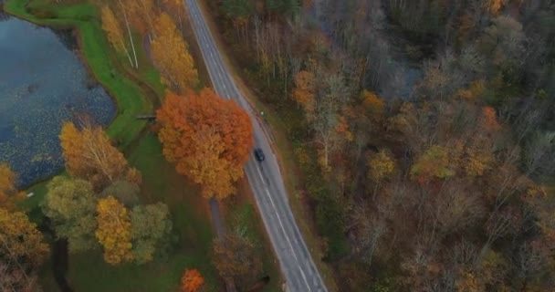 Black Car drive on the road in Sigulda. bridge, autumn road, drone flight, yellow forest