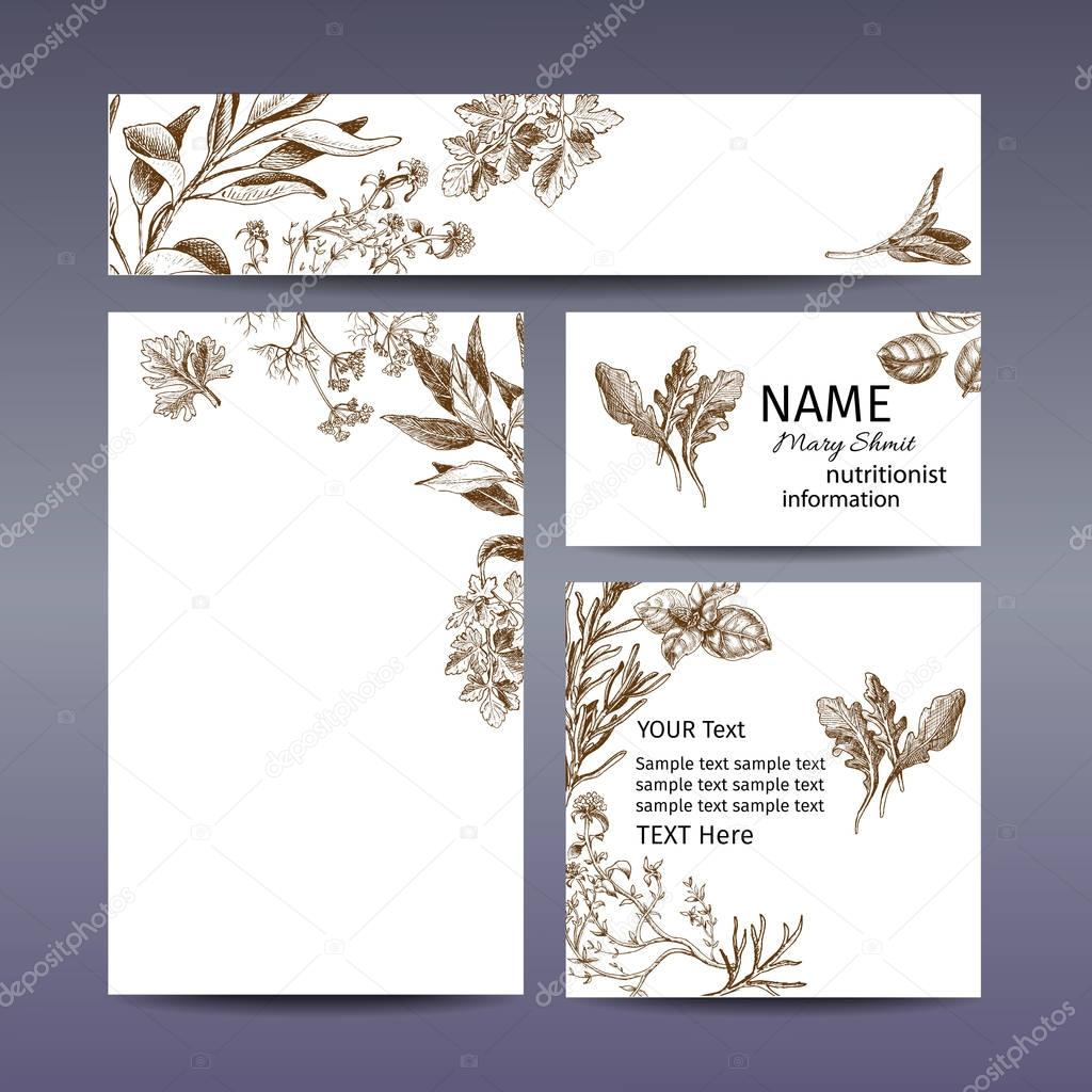 Corporate style - herbs. Vector background sketch herbs. Herbs - Bay leaf, dill, thyme, sage, rosemary, Basil, parsley, arugula.