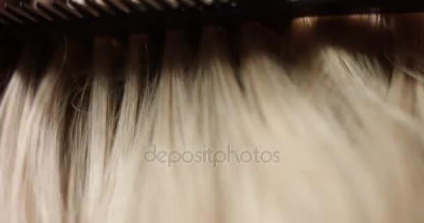 Česání dlouhé blond vlasy
