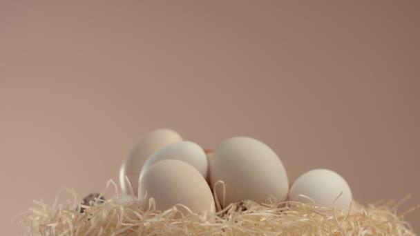 egy másfajta tojást gördülő, a tengelye a fészek