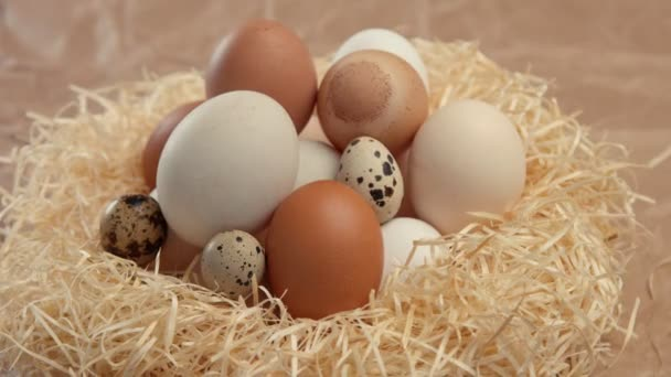 Nagyítás a különböző tojásos fészket. Húsvéti tojás