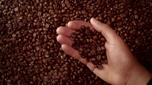 mans hand full of coffee beans