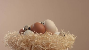 nest with a different eggs. Easter eggs