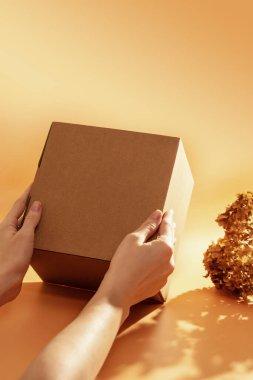 Corton box in female hands
