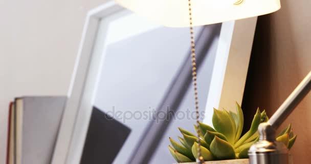 Aloe Vera Pflanze, Tischgestell Lampe und Foto — Stockvideo ...