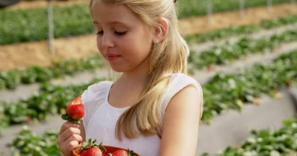 farm-girl-video