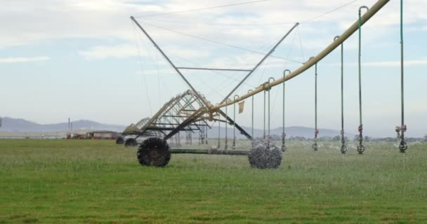 Automated sprinkler irrigation system in the farm at countryside 4k