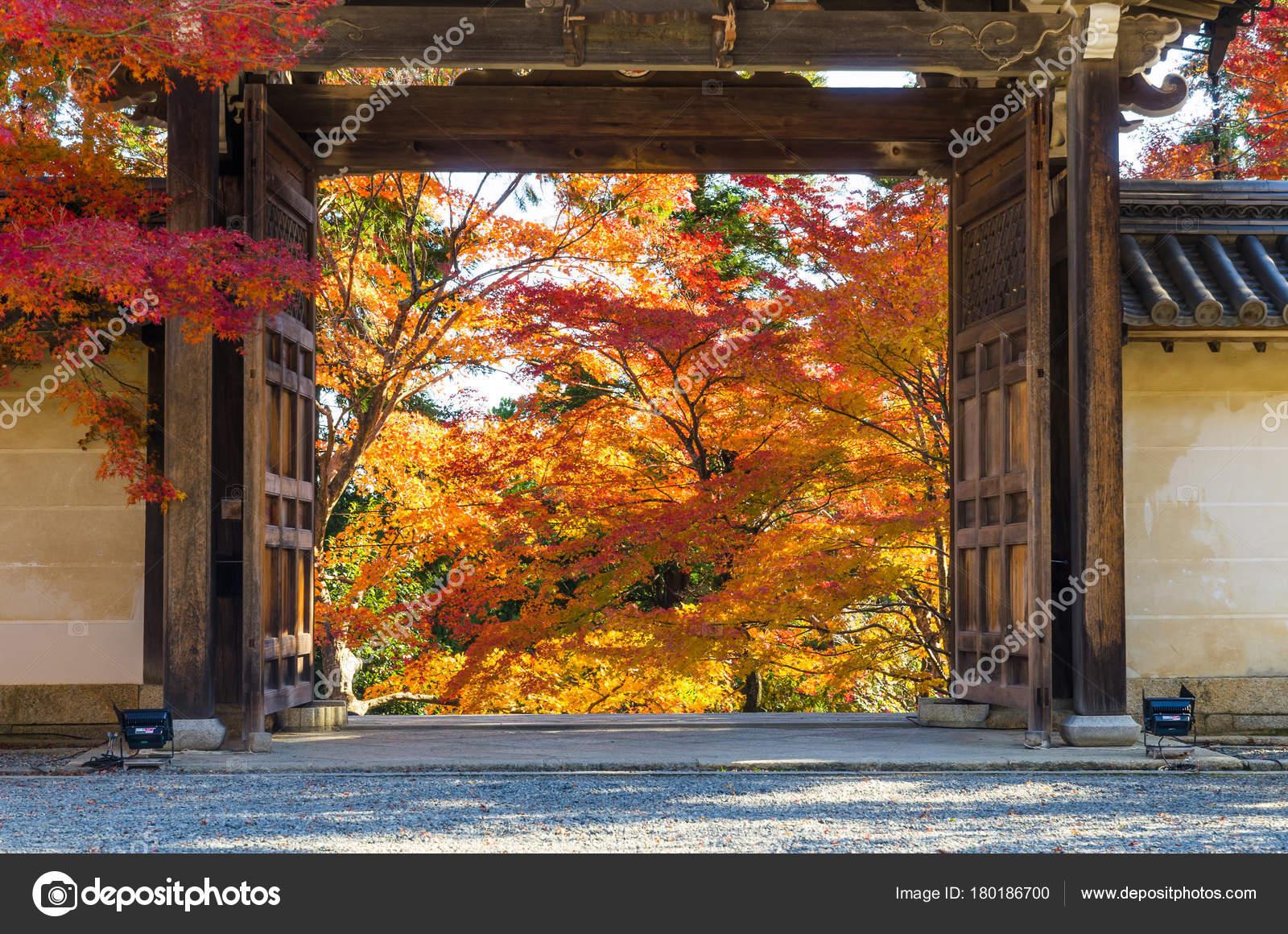 Porte Bois Style Japonais Entrée Porte Jardin Magnifique ...