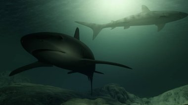 Computer generated sharks swimming close to the ocean floor